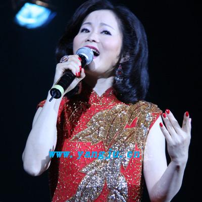 2008邓丽君经典歌曲回顾演唱会08.05.28 043